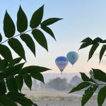 Imagine waking up to the sound of a hot air balloon, kshhh, kshhh, kshhh. Whilst you look trough your camper roof, all of a sudden you see all those amazing balloons drifting on by!